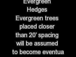 Evergreen Hedges Evergreen trees placed closer than 20' spacing will be assumed to become eventua