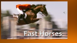 Fast Horses Top Two Fastest Horses