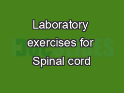 Laboratory exercises for Spinal cord