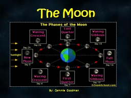 The Moon   By:   Cammie  Goodman