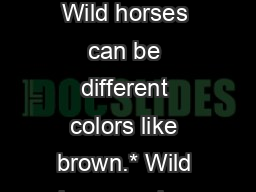 By  RACHEL Wild horses Wild horses can be different colors like brown.* Wild horses  also have long
