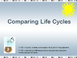 Comparing Life Cycles 1 4.10C – explore, illustrate, and compare life cycles in living organisms