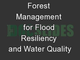 Forest Management for Flood Resiliency and Water Quality