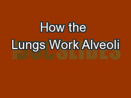 How the Lungs Work Alveoli