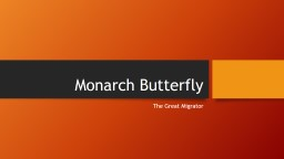 Monarch Butterfly The Great Migrator