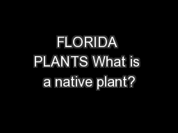 FLORIDA PLANTS What is a native plant?