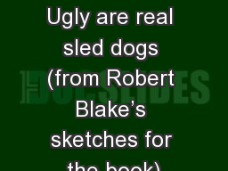 Painter and Ugly are real sled dogs (from Robert Blake�s sketches for the book)