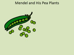Mendel and His Pea Plants