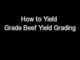 How to Yield Grade Beef Yield Grading