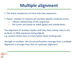 Multiple alignment   The linear comparison of more than two sequences