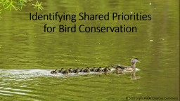 Identifying Shared Priorities for Bird Conservation