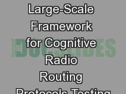 A Low-Cost Large-Scale Framework for Cognitive Radio Routing Protocols Testing