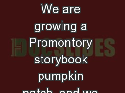 Copyright   Cari  Young We are growing a Promontory storybook pumpkin patch, and we need your help!