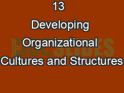 13  Developing Organizational Cultures and Structures