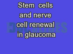 Stem  cells and nerve cell renewal in glaucoma