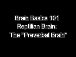 "Brain Basics 101 Reptilian Brain: The ""Preverbal Brain"""