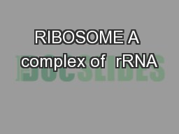RIBOSOME A complex of  rRNA