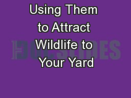 Using Them to Attract Wildlife to Your Yard