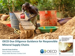OECD Due Diligence Guidance for