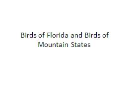 Birds of Florida and Birds of Mountain States PowerPoint PPT Presentation