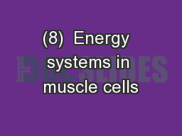 (8)  Energy  systems in muscle cells