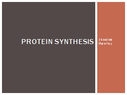 Jessica Hawley Protein Synthesis PowerPoint PPT Presentation