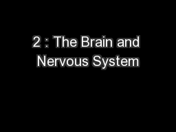 2 : The Brain and Nervous System