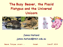 The Busy Beaver, the Placid Platypus and the Universal PowerPoint PPT Presentation