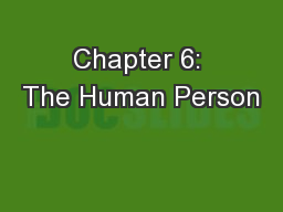 Chapter 6: The Human Person