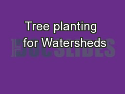Tree planting  for Watersheds