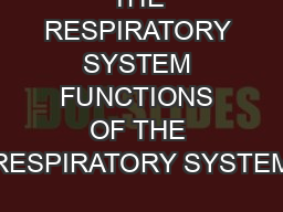 THE RESPIRATORY SYSTEM FUNCTIONS OF THE RESPIRATORY SYSTEM PowerPoint PPT Presentation