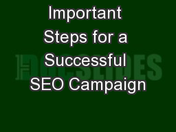 Important Steps for a Successful SEO Campaign