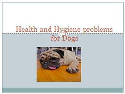 Health and  H ygiene problems for Dogs