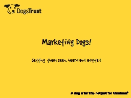 Marketing Dogs!  Getting them PowerPoint PPT Presentation