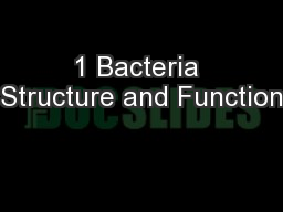 1 Bacteria Structure and Function PowerPoint PPT Presentation
