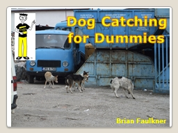 Dog   Catching  for Dummies