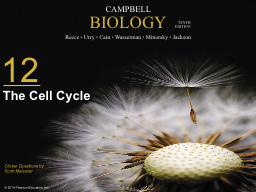 The Cell Cycle How many chromosomes are in the middle cell? PowerPoint PPT Presentation