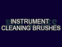INSTRUMENT CLEANING BRUSHES