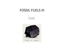FOSSIL FUELS III Coal   Formed from ancient plants.
