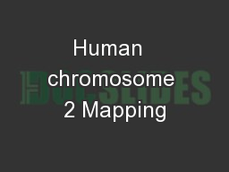 Human  chromosome 2 Mapping