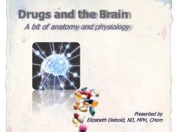 Drugs and the Brain    A bit of anatomy and physiology