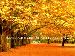 Check it out! It's the fall that Florida will never have…