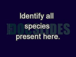 Identify all species present here.