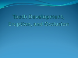 Tooth Development, Eruption, and Occlusion