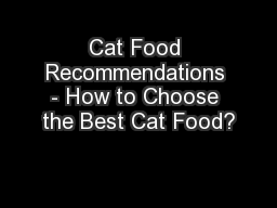 Cat Food Recommendations - How to Choose the Best Cat Food?