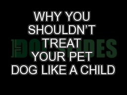 WHY YOU SHOULDN'T TREAT YOUR PET DOG LIKE A CHILD