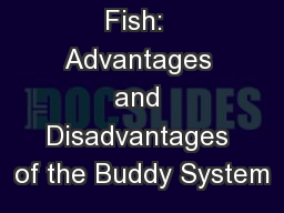 Schooling of Fish:  Advantages and Disadvantages of the Buddy System