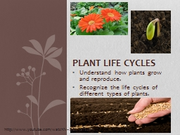 Understand how plants grow and reproduce. PowerPoint PPT Presentation