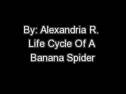 By: Alexandria R. Life Cycle Of A Banana Spider
