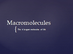 Macromolecules The 4 largest molecules of life